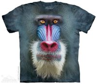 T-shirt enfant The Mountain Big Face Mandrill