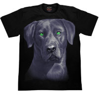 T-shirt Rock Chang Noir Labrador